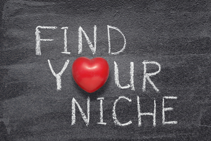 Chalkboard with find your niche written.