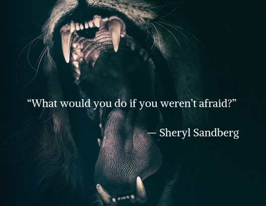 motivational quote, lion baring teeth