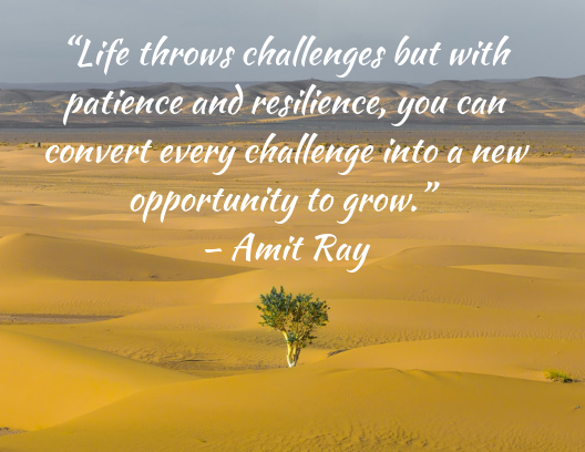 Quote about resilience Amit Ray