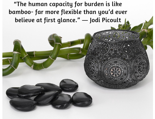 quote about resilience Jodi Picoult