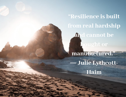 Resilience Quotes Julie Lythcott-Haim