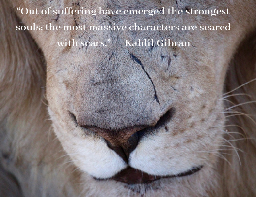 quote about resilience Kahlil Gibran