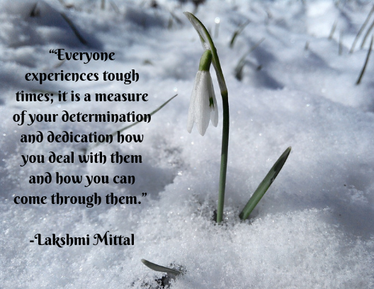 quote about resilience Lakshmi Mittal
