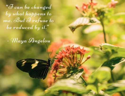 resilience quote Maya Angelou