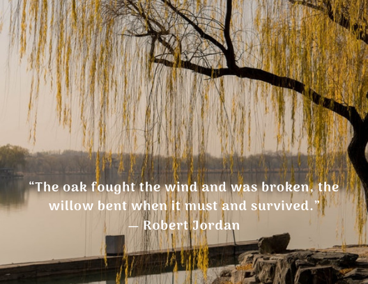 quote about resilience Robert Jordan