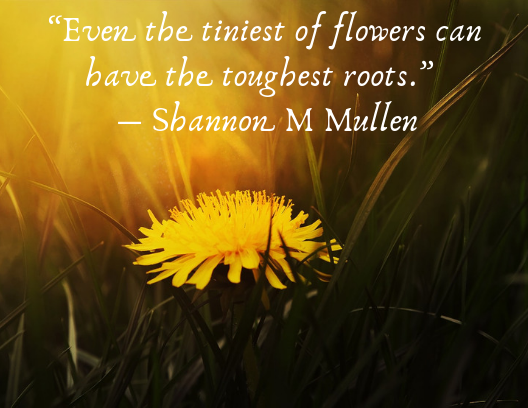 resilience quotes Shannon M Mullen